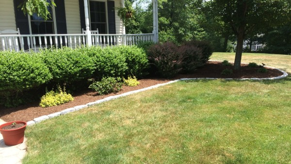 Bed Cleanup and Stone Edging, After