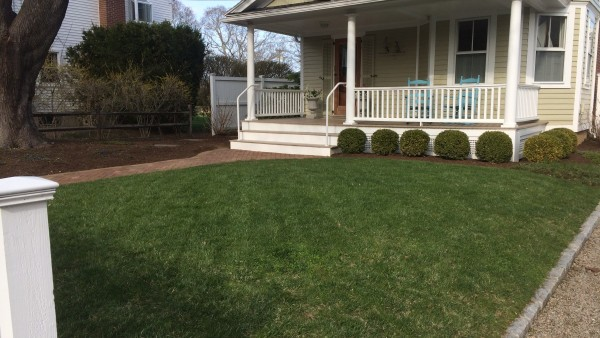 Madison Residence - Lawn installation and seasonal pruning with new mulching